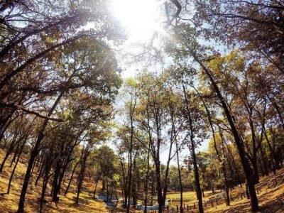 Parque Ecológico Florencia en Atingua Guatemala