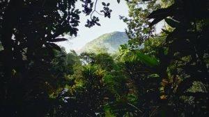 Parque Nacional Cuevas de Candelaría en Alta Verapaz