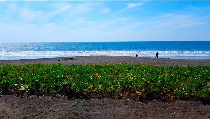 Playa de Hawaii, Santa Rosa