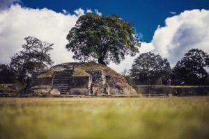 La Ceiba Árbol Nacional de Guatemala